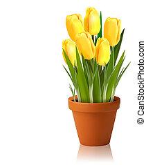 vettore, primavera, fiori freschi, giallo