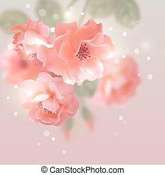 vettore, rose, fiori, lucente
