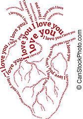 vettore, rosso, cuore umano