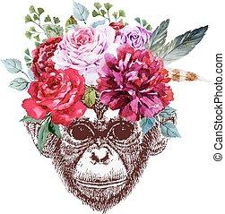 vettore, scimmia