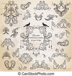 vettore, set:, calligraphic, disegni elementi, e, pagina, decorazione, vendemmia, cornice, collezione, con, fiori