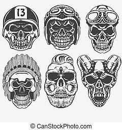 vettore, set, cranio