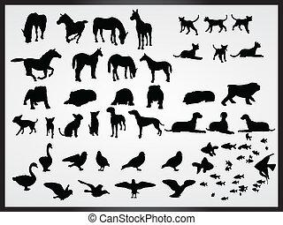 vettore, set, di, animali, fondo