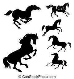 vettore, set, di, il, cavalli, bianco, fondo
