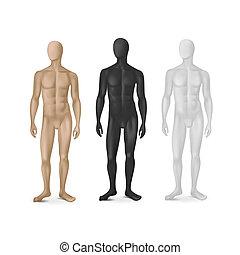 vettore, set, di, tre, maschio, indossatrici