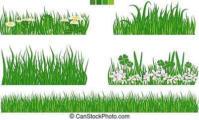 vettore, set, foglia, illustrato, fiore, erba verde