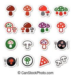 vettore, set, fungo, icone