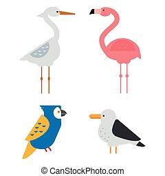 vettore, set, uccelli, illustrazione, isolato