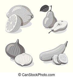 vettore, set, vegetariano, web., illustrazione, frutta, verdura, logo., simbolo, casato