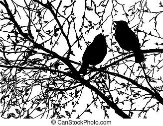 vettore, silhouette, albero, uccelli, ramo