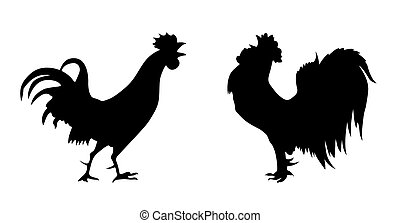 vettore, silhouette, di, il, gallo, bianco, fondo