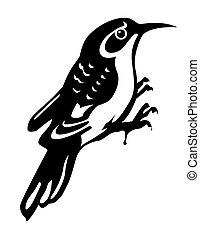 vettore, silhouette, di, il, legname, uccello, bianco, fondo