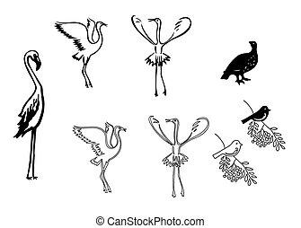 vettore, silhouette, set, -, uccelli