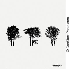 vettore, silhouettes., set, albero, illustration.