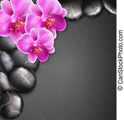 vettore, terme, fondo, con, pietre, e, orchidee