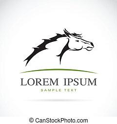 vettore, testa, cavallo, immagine