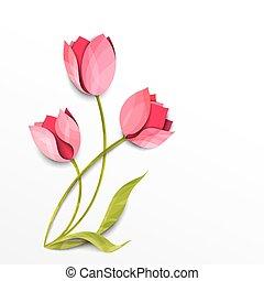 vettore, tulips., mazzolino, isolato, carta, white., arte, fiori