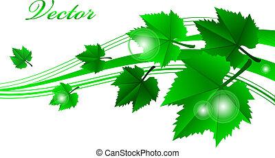 vettore, verde, cornice, con, foglie
