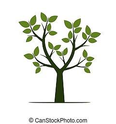 vettore, verde, leaf., albero, illustration.
