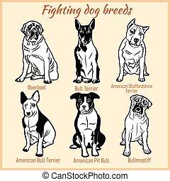 vettore, white., cani, set, combattimento, -, allevare