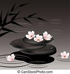 vettore, zen, pietre, e, ciliegia, fiori