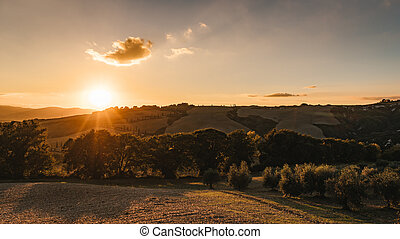 Vew of the hilly landscape in Tuscany.