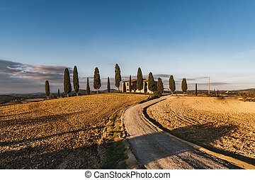 vew, tuscany., paysage, vallonné