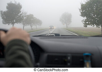 vezetés, autó, más, át, jármű, köd, látott, sűrű, szélvédő