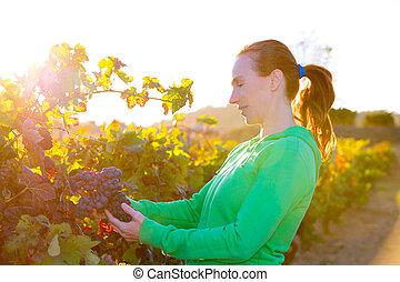 viña, mujer, hojas, mediterráneo, otoño, granjero, cosecha