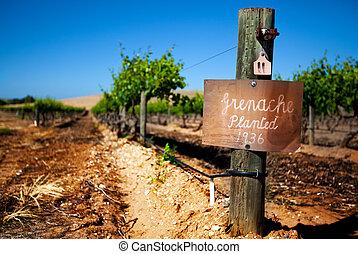 viña, vendimia, barossa