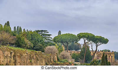 Via Sacra and Tito Arc, Rome, Italy - Landscape aerial view...