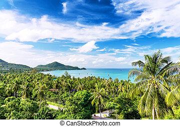 viagem, férias, fundo, -, koh, tao, tailandia