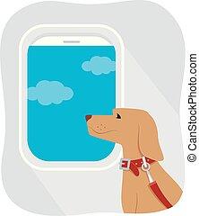 viaggiare, aereo, cane