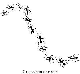 viajando, formigas, fila