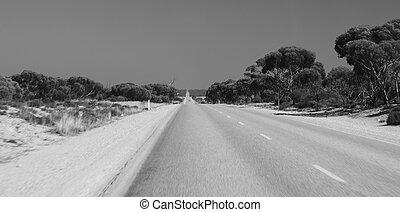 viaje de camino