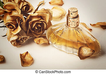 Vial of perfume and dry rose flower on white background
