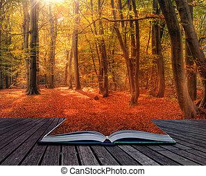 vibráló, kép, ősz, könyv, erdő, bukás, apródok, táj