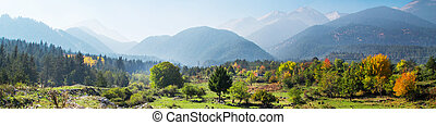 Vibrant autumn panorama background with colorful green, red, yellow trees and mountains peaks