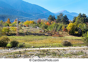 Vibrant autumn panorama background with colorful green, red, yellow trees and old farm fence