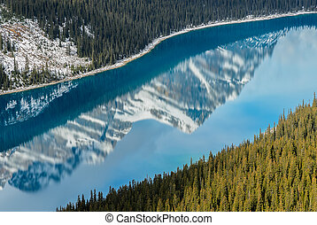 Vibrant Blue Peyto Lake with reflection of Canadian Rocky Mountain in Alberta, Canada