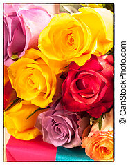 Vibrant bunch of colorful romantic roses