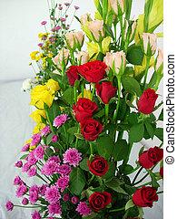 Vibrant Color - A color bouquet