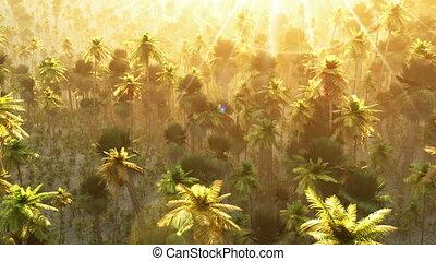 Vibrant colors palm trees summertim