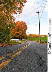 Vibrant Fall Foliage Road