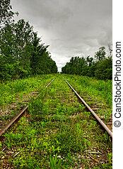 grass on a railway
