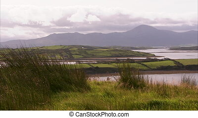 Vibrant green Ireland landscape - A wide shot of a green...