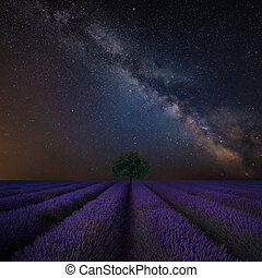 Vibrant Milky Way composite image over landscape of Beautiful lavender field