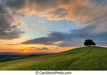 Vibrant sunset over Tuscany