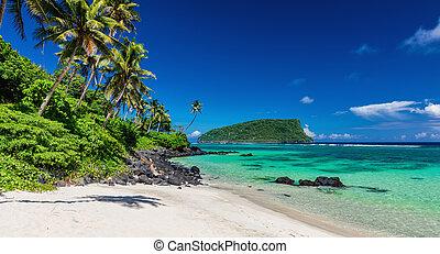 Vibrant tropical Lalomanu beach on Samoa Island with coconut palm trees and rocks