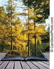 vibrante, árvores, Outono, impressionante, floresta, Conceitual, paisagem